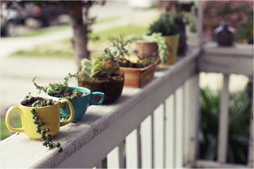 6-how-to-re-use-old-cups-ideas-flower-pots-succulents-DIY-handmade