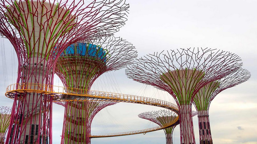 7-Gardens-by-the-bay-park-singapore-biomimicry-in-modern-architecture-futuristic-hi-tech-trees