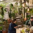7-green-eco-naturalistic-style-house-for-rent-by-Pantone-Airbnb-London-greenery-potted-plants-dining-room-interior-design-table