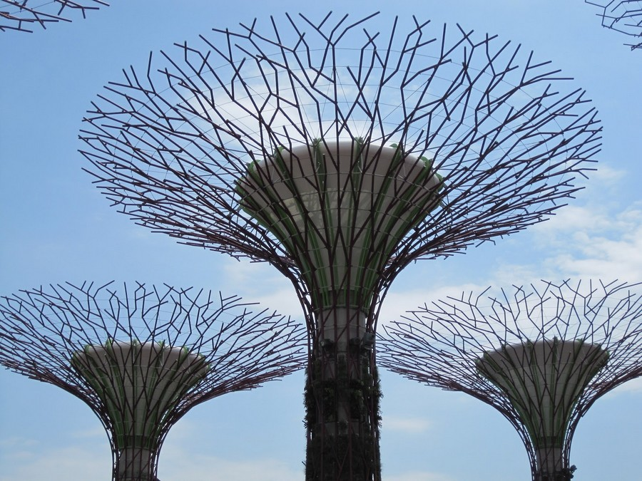 8-Gardens-by-the-bay-park-singapore-biomimicry-in-modern-architecture-futuristic-hi-tech-trees