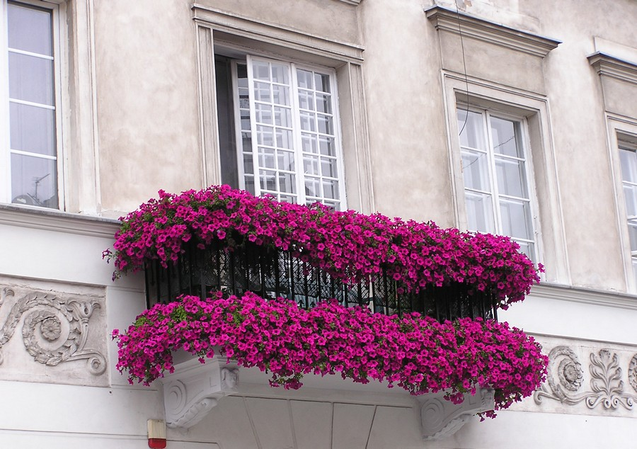 27-beautiful-balconet-balconette-Juliet-balcony-in-architecture-exterior-design-wrough-metal-railing-forgery-barrier-flower-bed