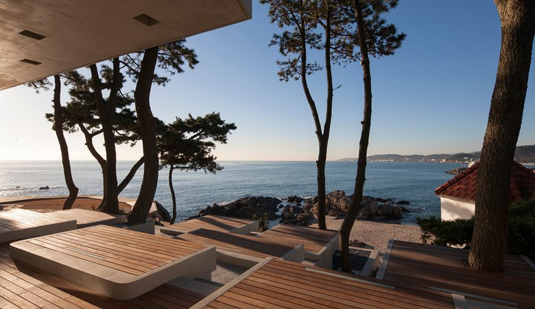 8-coastal-seaside-cafe-in-South-Korea-sea-view-restaurant-tall-conifers-trees-open-terrace-wooden-benches-mats-picnic-spots
