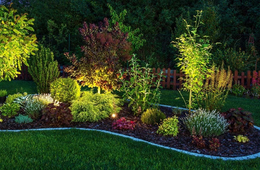 1-2-outdoor-garden-landscape-lighting-ideas-spotlighting-plants-trees-shrubs-uplights-in-ground