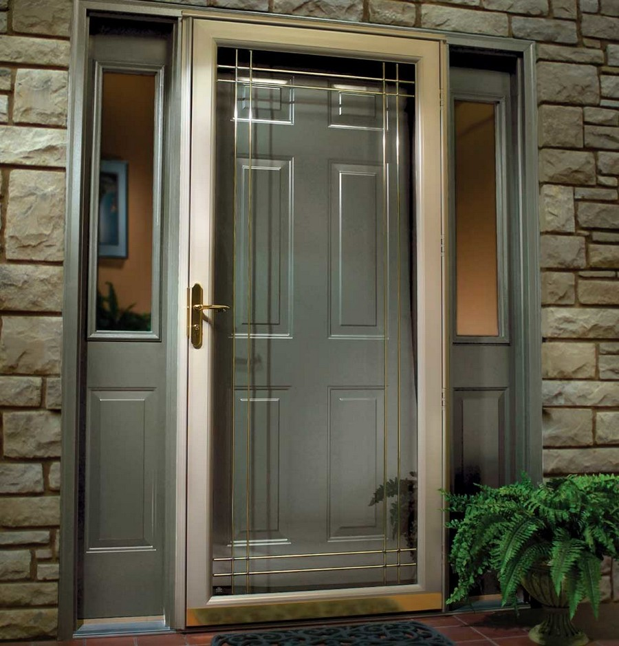 1-safety-front-door-gray-glass-inserts-metal
