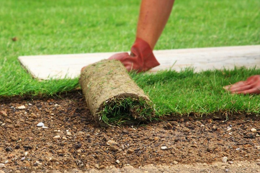 4-green-grass-laying-turf-lawn-roll