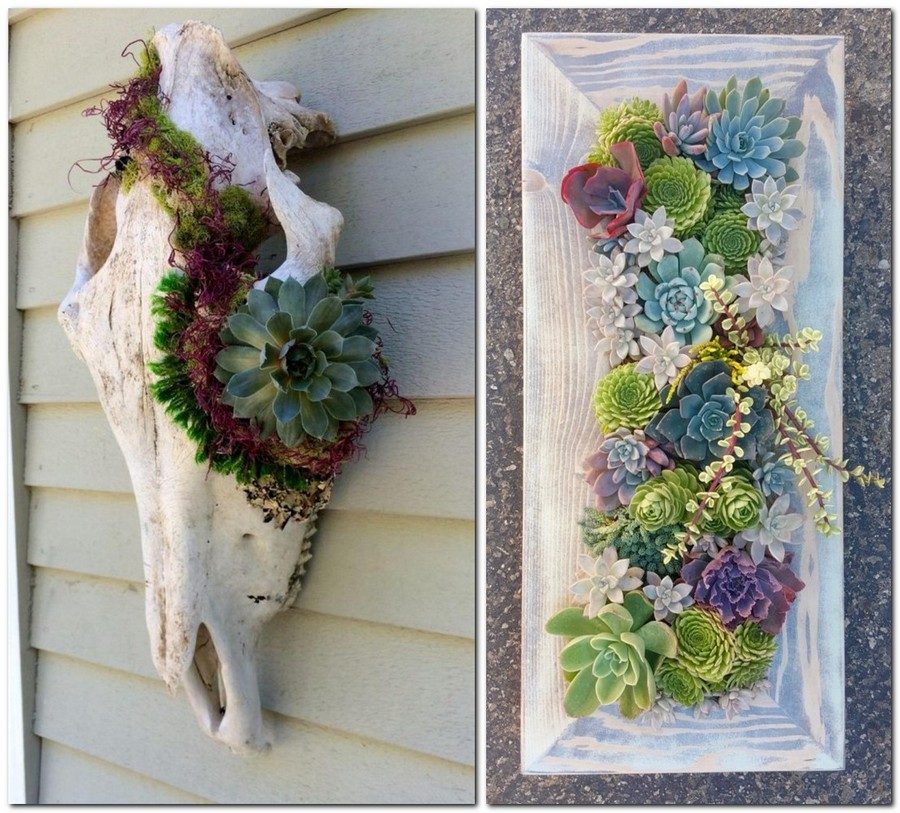 1-creative-garden-decor-ideas-succulent-wall-decor-artwork-in-frame-composition