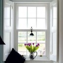 2-beautiful-sash-windows-white-purple-tulips-flower-vase-black-lamp-white-walls-throw-pillow