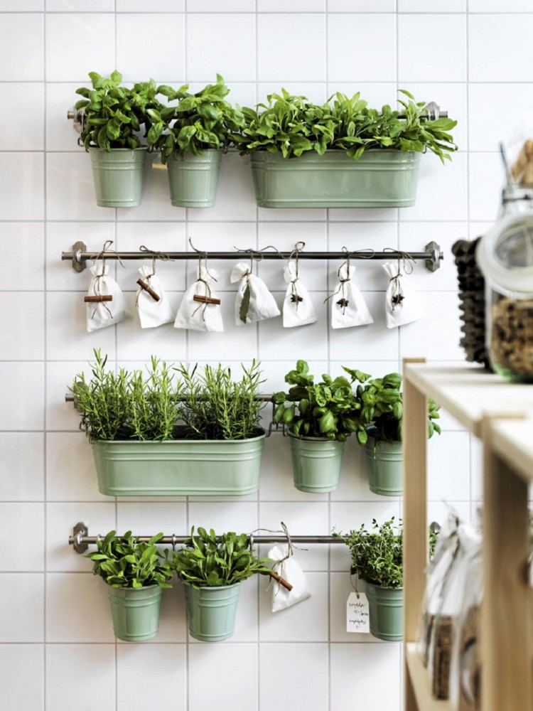 6-wall-mounted-flower-herbs-pots-indoor-in-the-kitchen-growin-buckets-racks-railings-white-square-wall-tiles