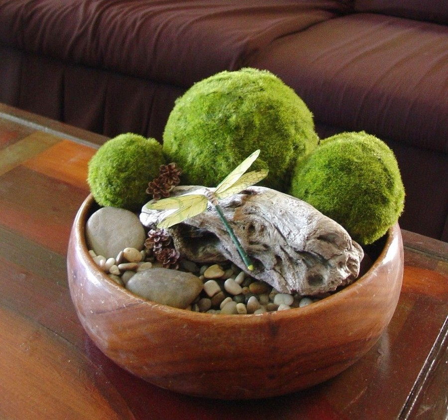 1-3-stabilized-natural-living-moss-in-interior-design-home-decor-composition-in-a-wooden-bowl-eco-style-pebbles
