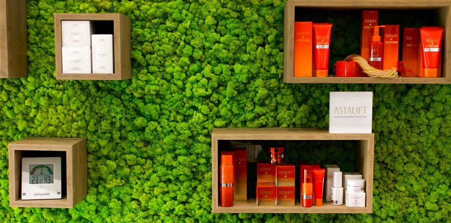 2-4-stabilized-natural-living-moss-in-interior-design-home-decor-eco-style-vertical-garden-wall-background-for-bookshelves