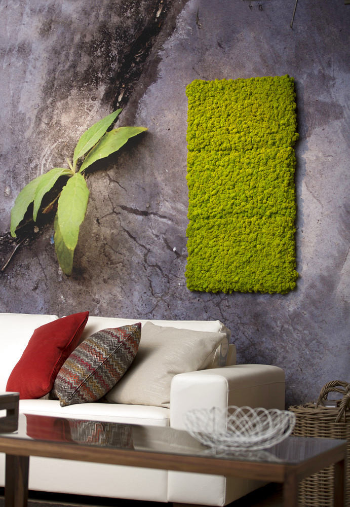 3-5-stabilized-natural-living-moss-in-interior-design-home-decor-eco-style-wall-art-in-living-room-sofa-coffee-table
