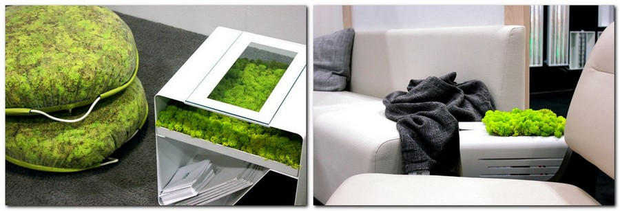 4-4-stabilized-natural-living-moss-in-interior-design-home-decor-eco-style-living-room-coffee-table