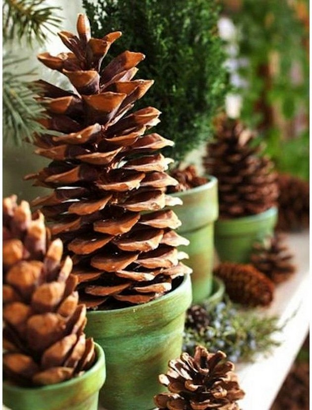 7-pinecones-pine-fir-spruce-cones-home-decor-Christmas-decoration-ideas-eco-style-in-green-flower-pots