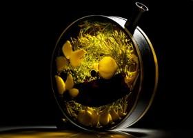 1-the-porthole-glass-infuser