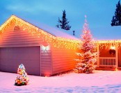 LED home decoration for the New Year