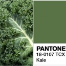 0-kale-color-pantone-green