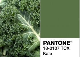 0-kale-color-pantone-green