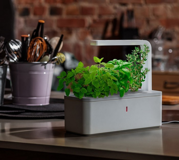 1-smart-home-garden-device-click-and-grow