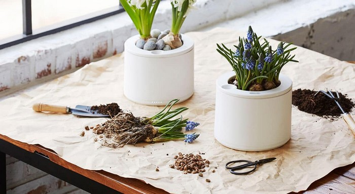 15-smart-home-garden-device-thing-planty