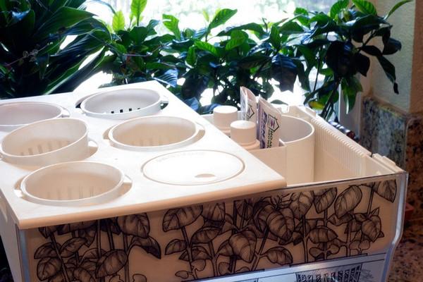 2-aquafarm-hydroponic-eco-system-for-indoor-herbs