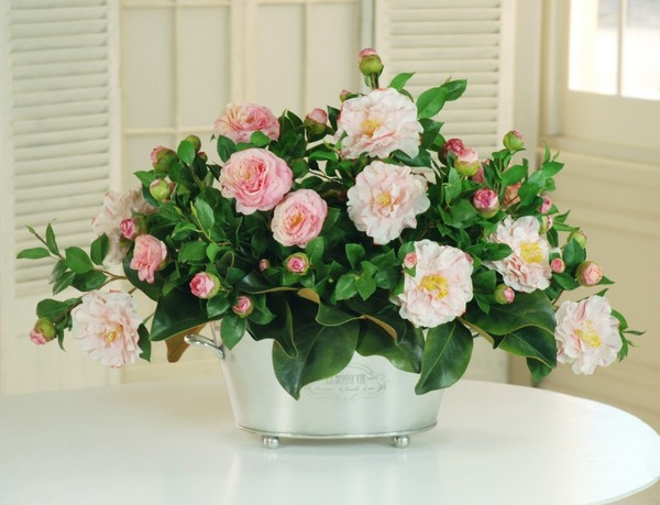 22-winter-blooming-indoor-flower-Japanese-Camellia