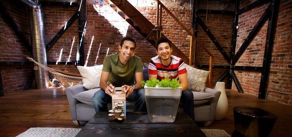 3-aquafarm-hydroponic-eco-system-for-indoor-herbs