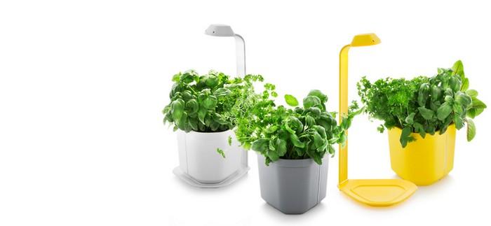 6-smart-home-garden-device-genie-kitchen-garden