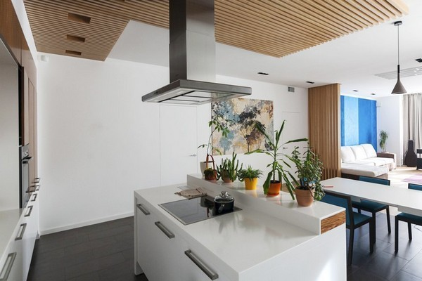 9-minimalist-style-interior-kitchen-island-white-walls-potted-indoor-plants