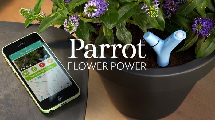 9-smart-home-garden-device-parrot-flower-power
