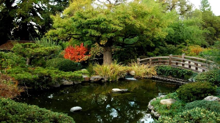 0-beautiful-Japanese-garden-pond-bridge