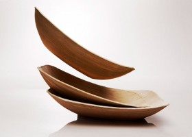0-eco-friendly-compostable-single-use-disposable-non-toxic-dinnerware-from-fallen-leaves