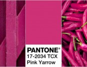 Top Trend 2017: Pink Yarrow Color