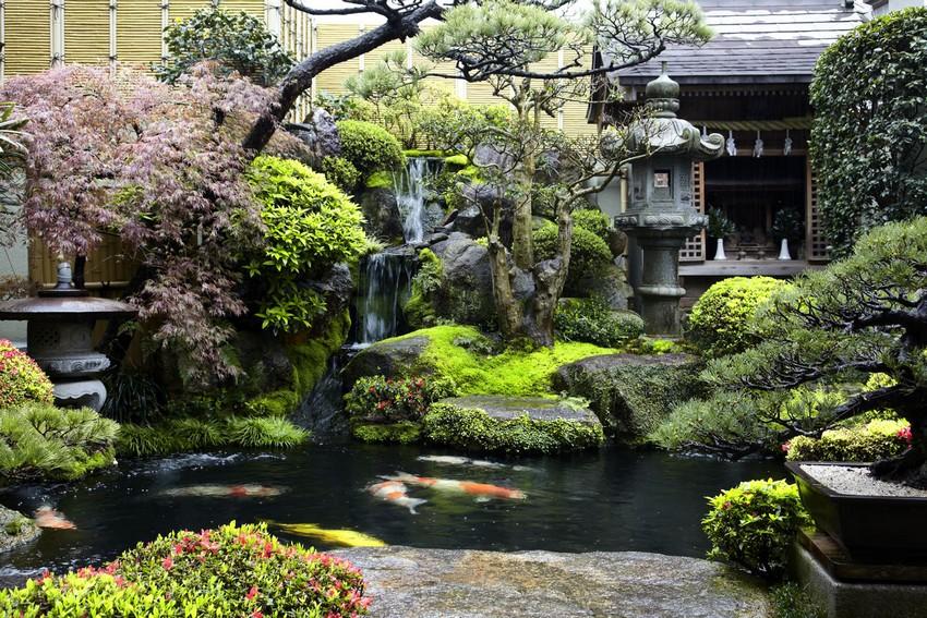 00-Japanese-garden-plants-pond-stone-lantern-koi-gazebo