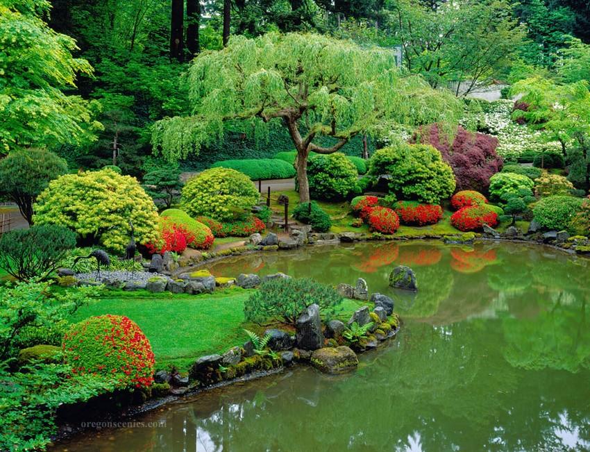 1-2-beautiful-Japanese-garden-pond