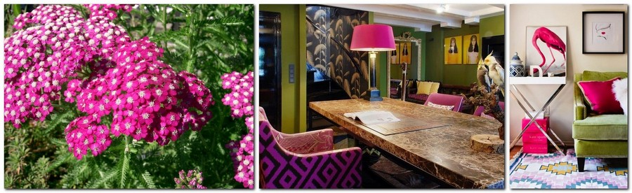 2-pink-yarrow-color-of-the-year-2017-pantone-in-interior-design-and-green-greenery