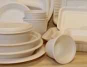 Eco-Tableware from Sugar Cane