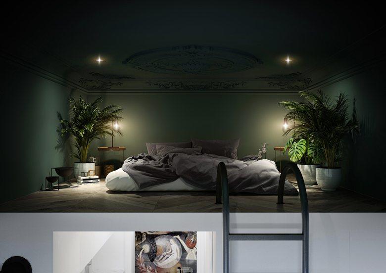 1-studio-apartment-with-mezzanine-floor-bedroom-loft-bed-dark-green-kale-ceiling-white-walls-eclectic-style-big-potted-houseplants-ladder-moldings-spot-lights