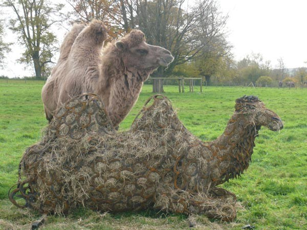 14-camel-hay-full-forgen-metal-garden-sculptures-art-from-horseshoes-by-Tom-Hill-England