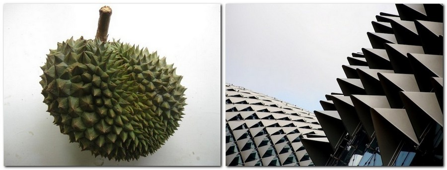 3-2-esplanade-marina-bay-singapore-biomimicry-in-modern-architecture-spiky-metal-roof-durian-fruit
