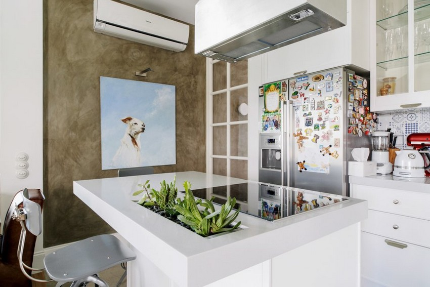3-2-minimalist-style-white-walls-and-gray-apartment-interior-design-kitchen-island-set-potted-plants-dog-wall-picture