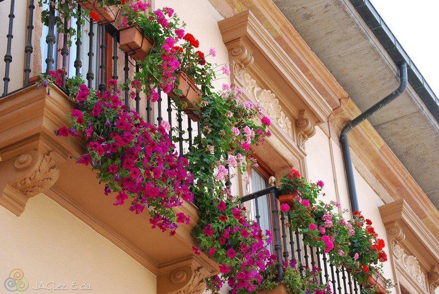 1-beautiful-balconet-balconette-Juliet-balcony-in-architecture-exterior-design-wrough-metal-railing-forgery-barrier-flower-bed
