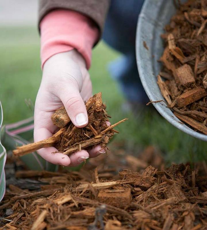 10-mulch-organic-gardening