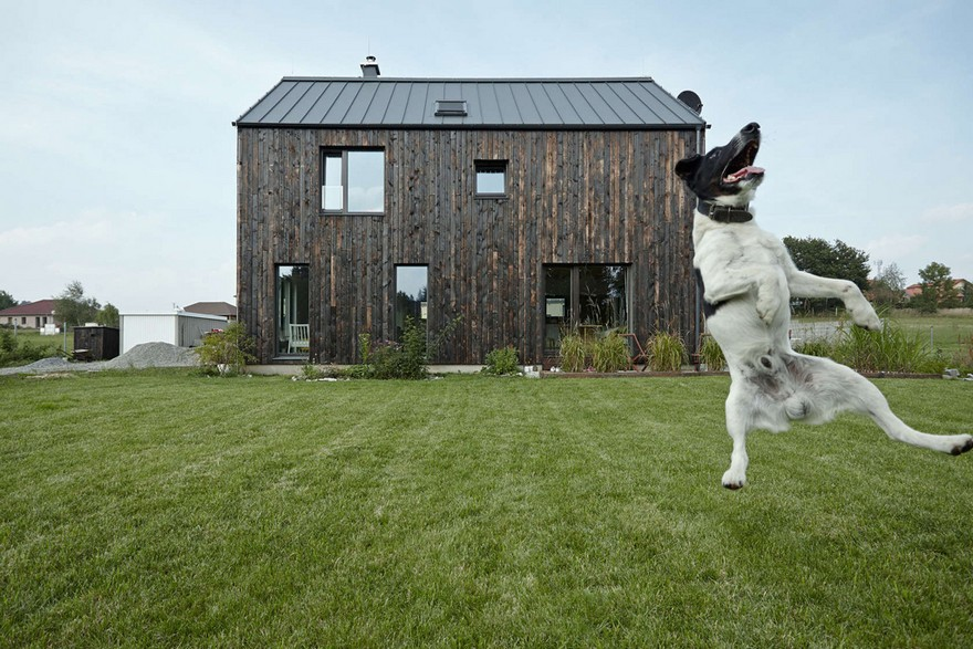 12-burnt-charred-wood-house-siding-exterior-lumber-boards-contemporary-log-cabin-dog-jumping-happily-in-the-yard