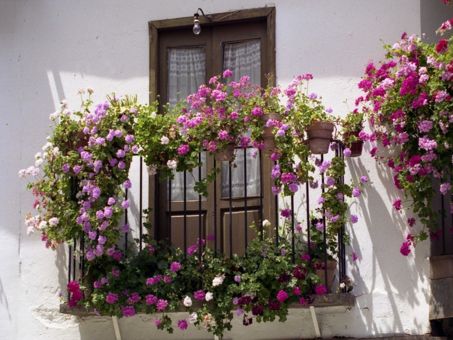 23-beautiful-balconet-balconette-Juliet-balcony-in-architecture-exterior-design-wrough-metal-railing-forgery-barrier-flower-bed