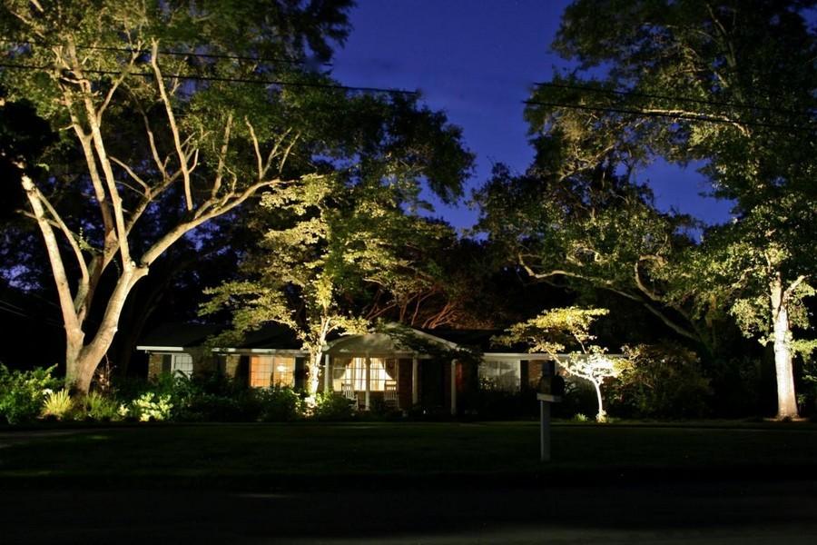 1-6-outdoor-garden-landscape-lighting-ideas-spotlighting-plants-big-trees-uplights-in-ground-lights