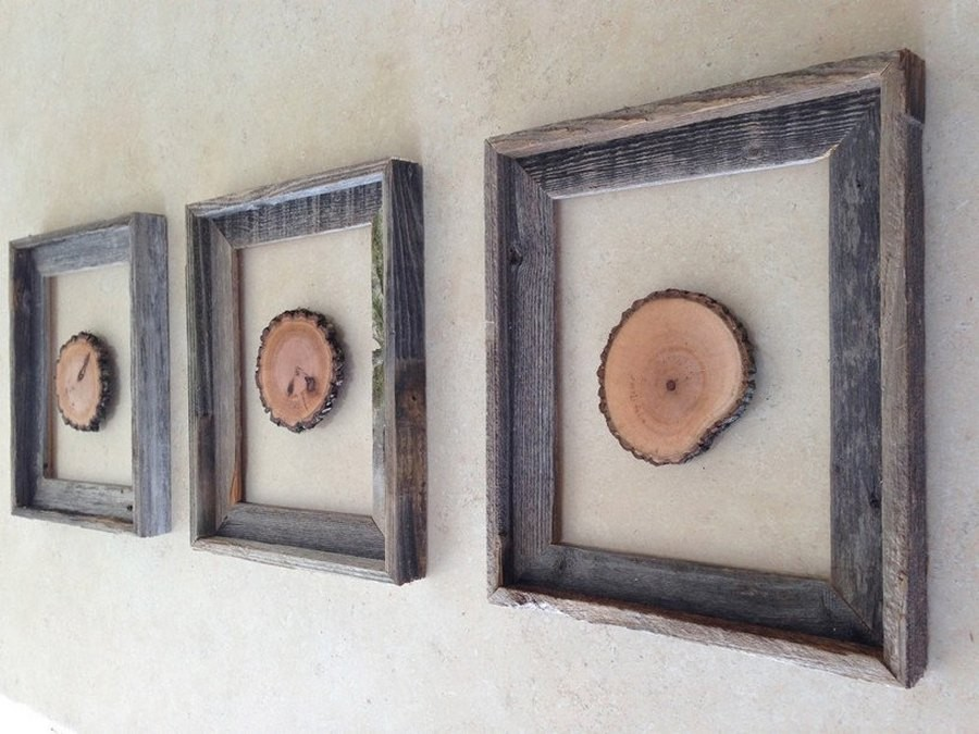 3-2-tree-wood-cross-sections-cuts-in-interior-design-decor-wall-art-picture-frames
