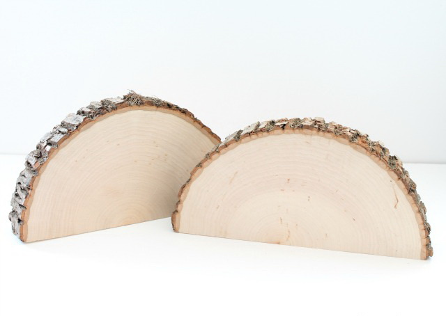 8-1-tree-wood-cross-sections-cuts-in-half