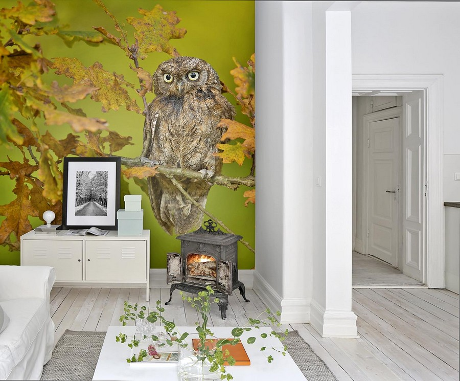 1-beautiful-wallpaper-wall-mural-wall-covering-digital-photo-printing-owl-autumn-forest-bird-green-yellow-orange-accent-wall-chest-of-drawers-cast-iron-stobe-coffee-table-white-floor-Mr-Perswall