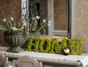 Living Moss in Interior Design: 25 Ideas and Care Tips