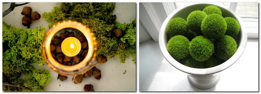 1-5-stabilized-natural-living-moss-in-interior-design-home-decor-eco-style-composition-candle